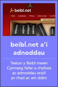 botymau homepage gwefanau3