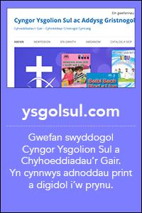 botymau homepage gwefanau4